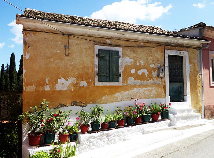 Foto van huis met rij potplanten